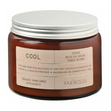 Bougie parfumée COOL 400g - Fariboles